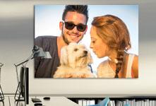 jeune-couple-avec-chien-bureau-plexiglas