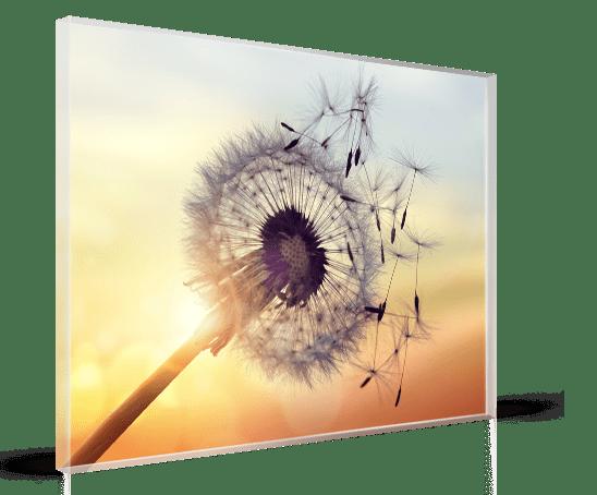 plexiglas-fleur-vent
